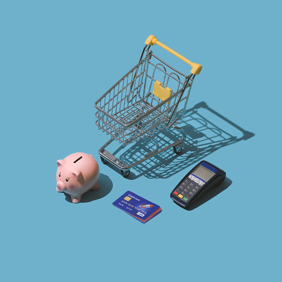grocery-shopping-with-credit-cards-CTS3W9L